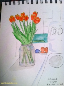 Orange tulips by stove 2 wm